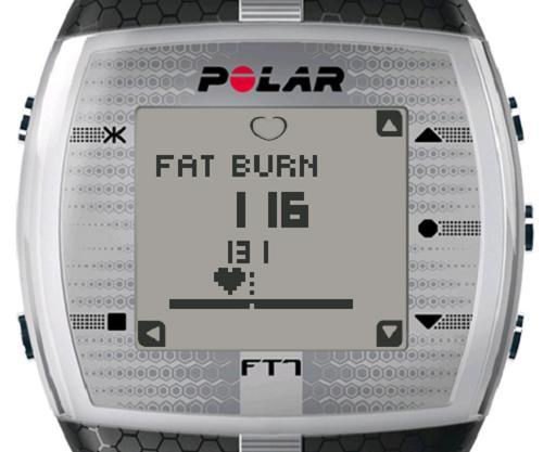 polar-ft7-001.JPG